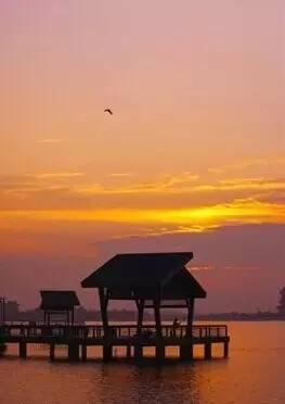 阳澄湖半岛获评首批国家级旅游度假区 这些精彩不容错过
